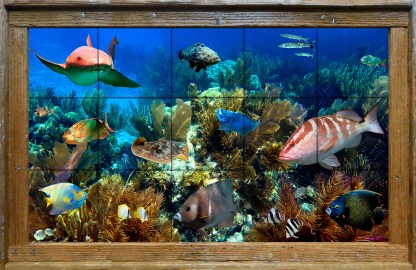 Alligator Reef 1 Tile Mural