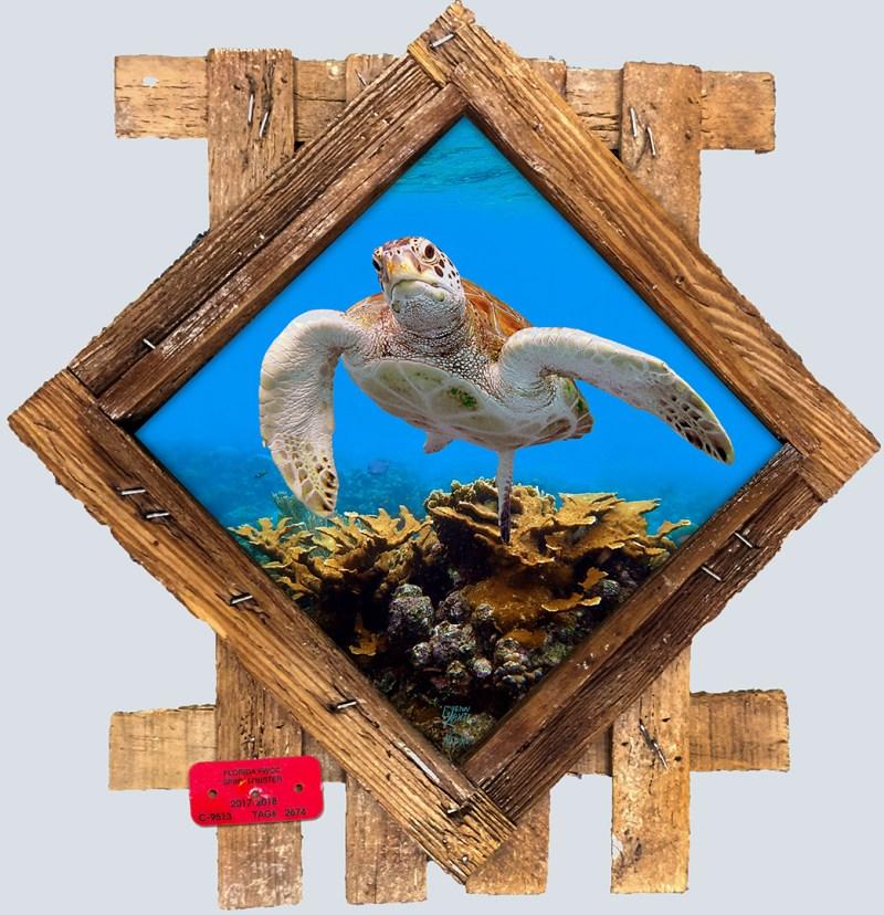 Underwater Ceramic Tiles in Lobster Frames