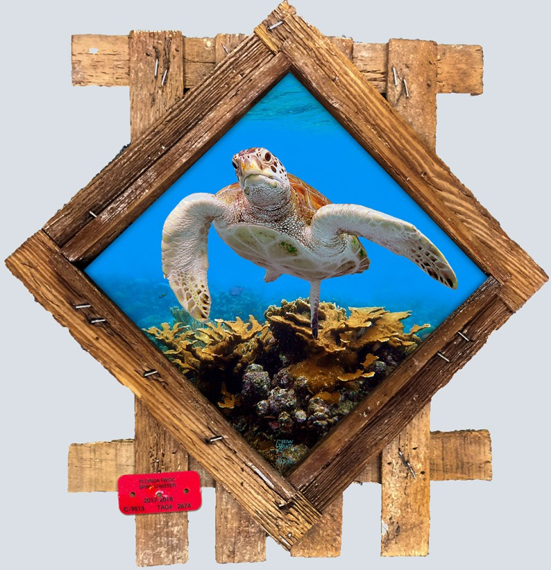 Underwater Ceramic Tiles in Lobster Frames