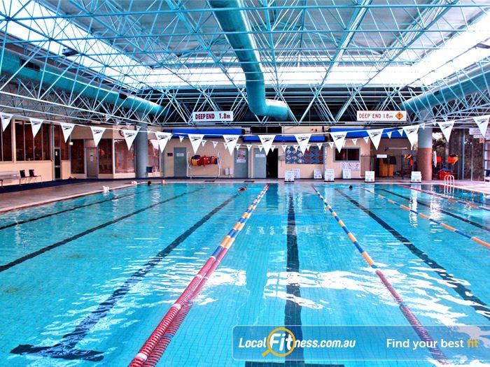 Northcote Swimming Pools  FREE Swimming Pool Passes