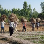 An Eco-Farm in Myanmar (Burma): Saving the World with Organic Agriculture
