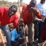 Soils, Food & Healthy Communities