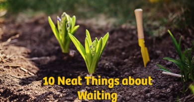 10 neat things about waiting