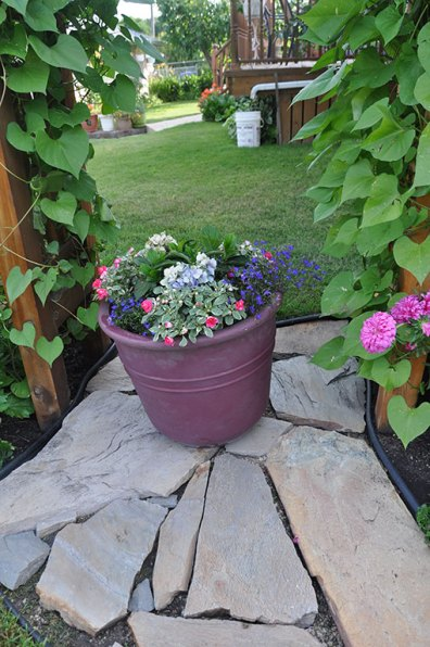 Flagstones provide a base for a container under an arbour.