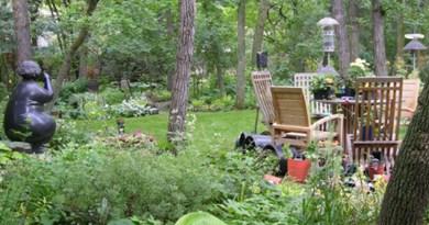 Garden of shade