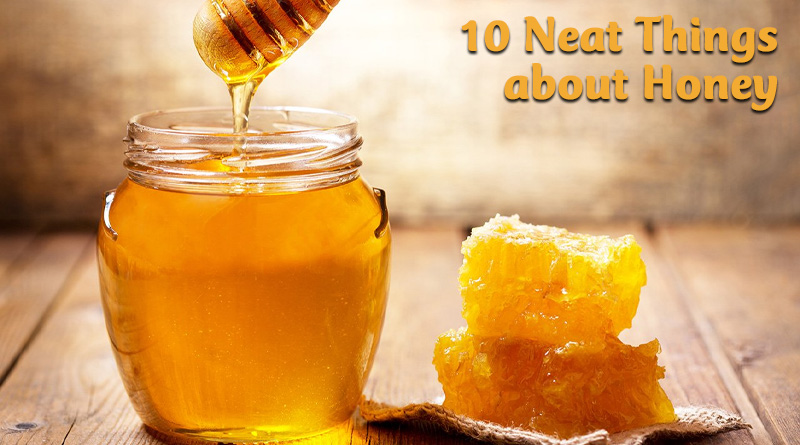 10 neat things about honey
