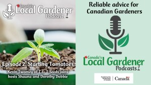 Canada's Local Gardener Podcast episode 2 starting tomatoes from seed