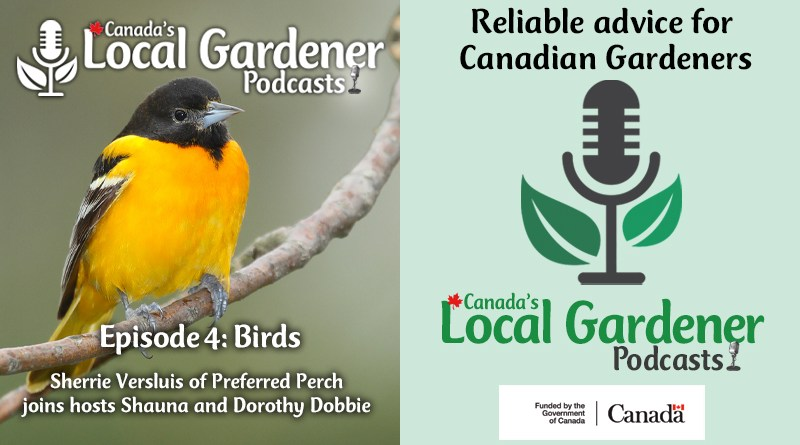 Canada's local gardener podcast episode 4 about birds