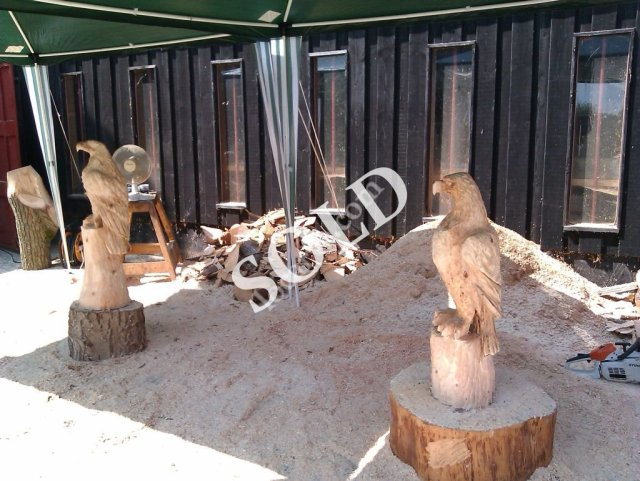 show as slideshow sold skywatch seat sold chainsaw carved benches for ...