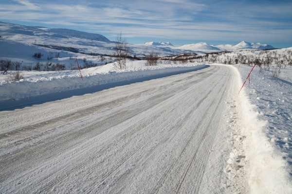 Winter Roads Location cats