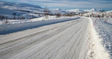Winter Roads Location cats