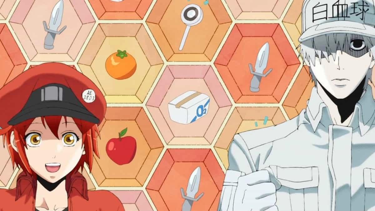"""Fotogramma della seconda stagione di: """"Cells at work!!"""""""
