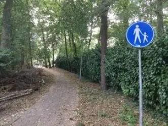 Het voetpad van de Oude Enkweg naar de Daslook. (foto: LochemsNieuws)