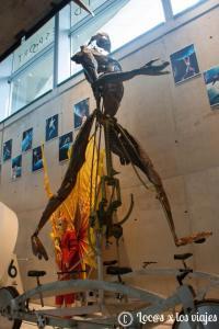 Museo-Ol-C3-ADmpico-2