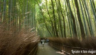 Visita a Arashiyama y el noroeste de Kioto
