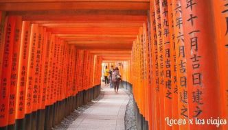 Excursión a Fushimi Inari-Taisha y Nara