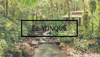 Parque Nacional de El Yunque