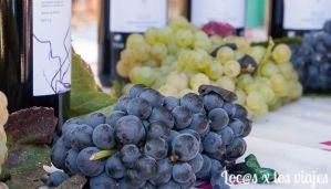 Fiesta de la Vendimia de la Rioja Alavesa