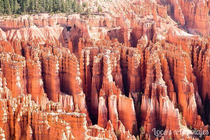 Hoodoos en Bryce Canyon