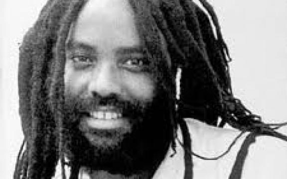 Mumia Abu-Jamal, 30 jaar onrecht