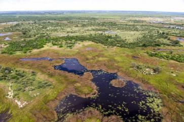 Okavango Delta.gallery_image.5
