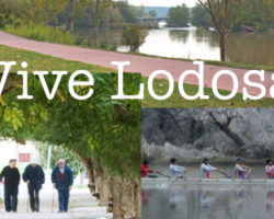 vive Lodosa