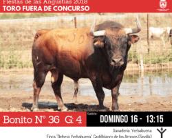 CambioTorosConcurso02