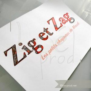 zig et zag affiche