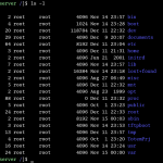 shell_linux
