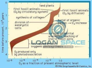At the point when did oxygen levels change for a moment time