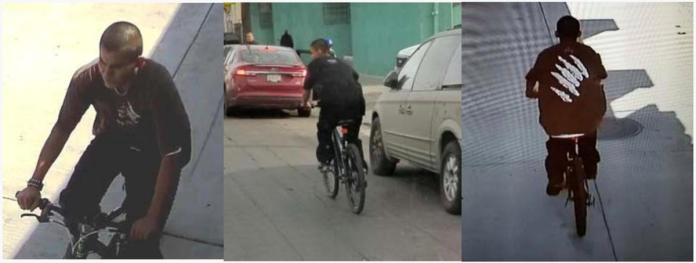 [NEWS] Homeless man arrested over bike-riding slasher attacks in Los Angeles – Loganspace AI