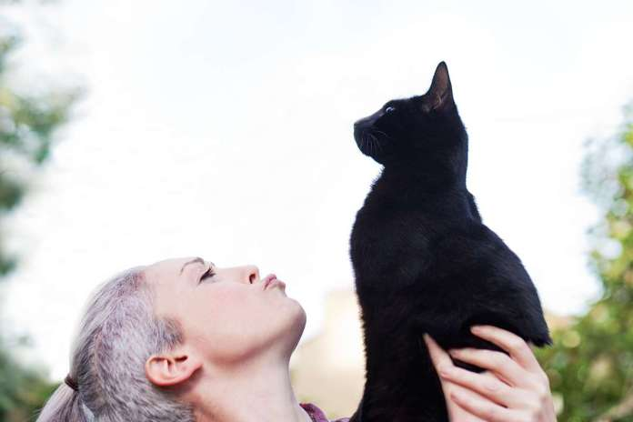 [Science] Pet cats know their names they just sometimes prefer to ignore you – AI