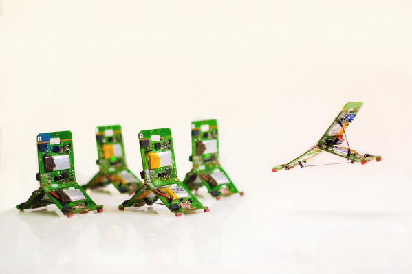 [NEWS] These robo-ants can work together in swarms to navigate tricky terrain – Loganspace