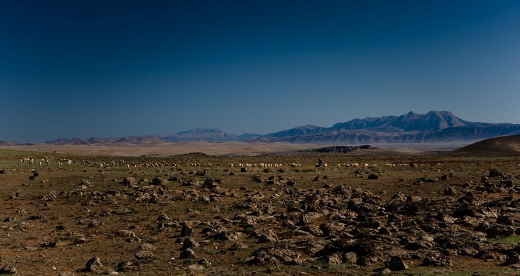 travel-destination-photographer-morocco-033