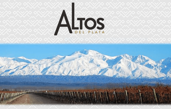 Altos Del Plata La Línea Joven De Terrazas De Los Andes