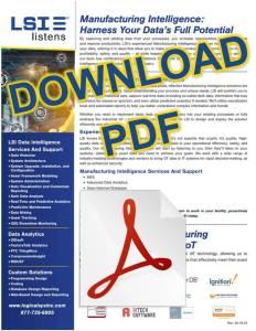 Download LSI MI PDF