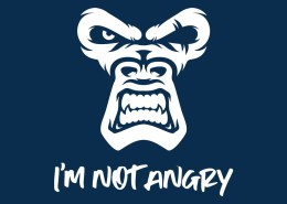 I'm Not Angry, The Monkey