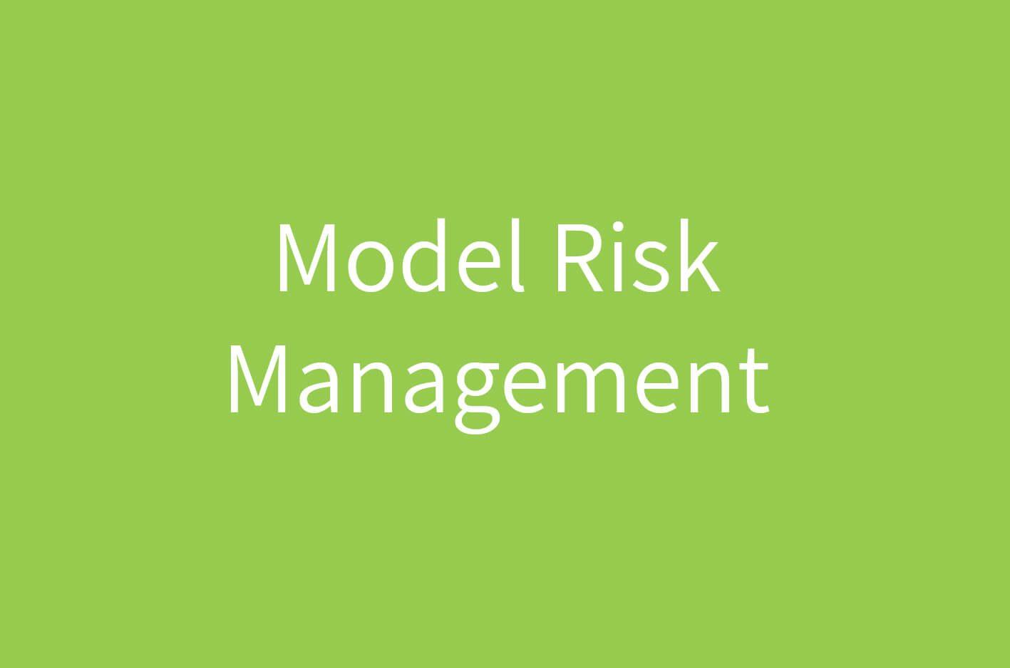 Model Risk Management Framework and Software  LogicManager
