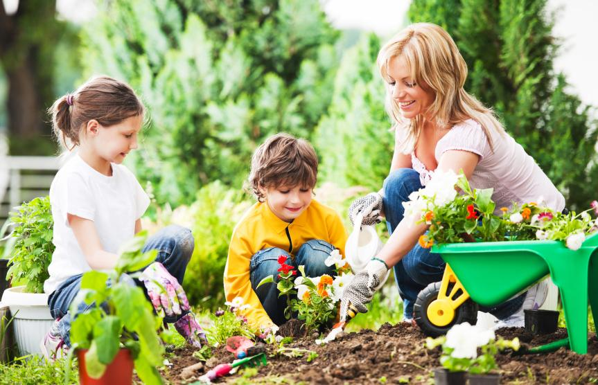 6 Things You Didn't Know That Can Make Your Garden Grow Faster
