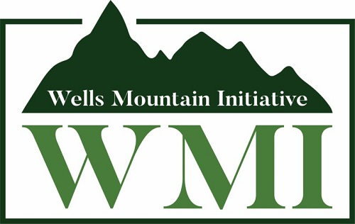 Well Mountain Initiative Scholars Program 2021