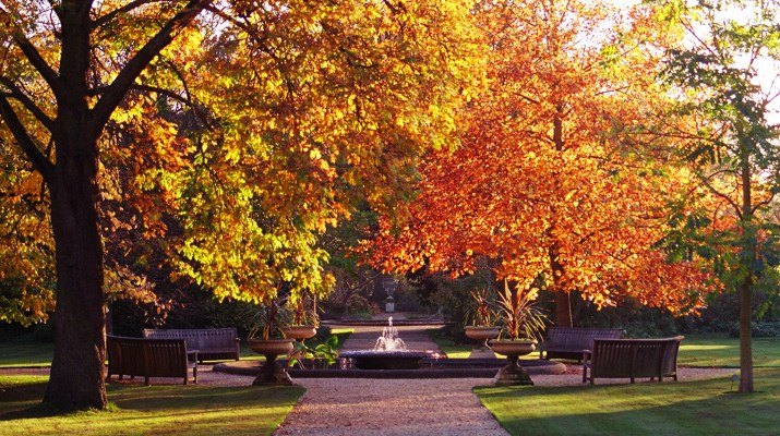 oxford_botanic_garden_in_autumn_2004
