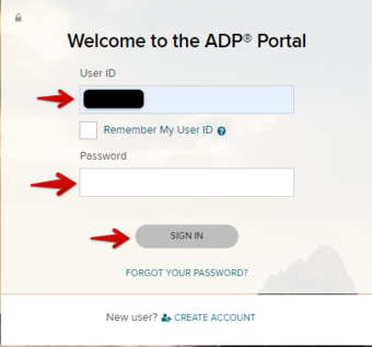 ADP Portal Password for Administrator