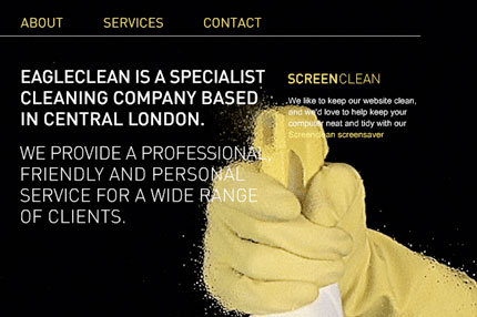 Eagle Clean website design