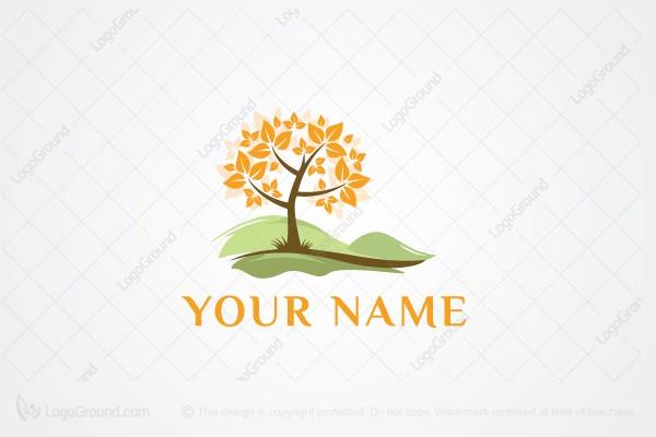 seasons church logo