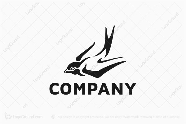 Unique Swallow Bird Logo
