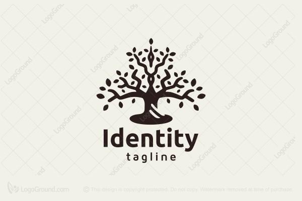 exclusive logo 170041 tree