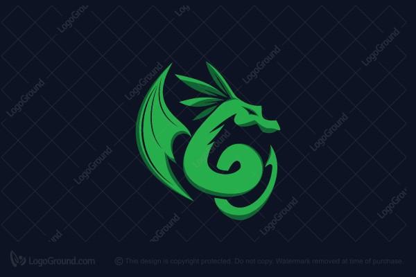 dragon leaf logo