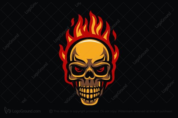 top 20 skull logos