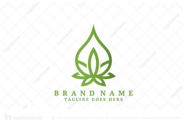 exclusive logo 136078 cannabis