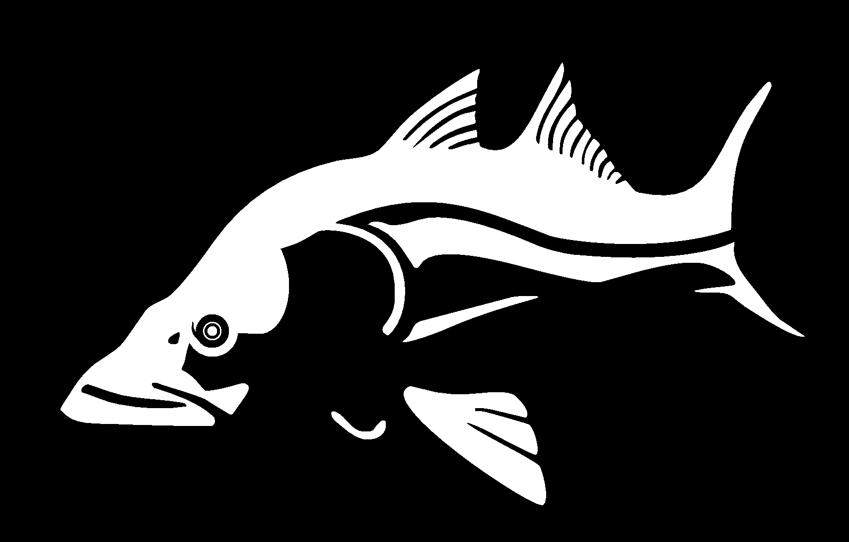 hight resolution of bas fish clipart